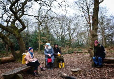 People sitting on decorative logs situated in the heathland