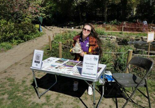 Toad show registration desk at Monk's garden